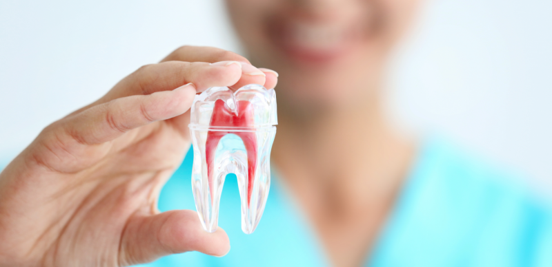 featured image for price of root canal in the philippines
